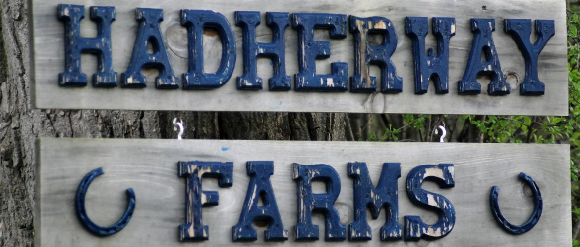 Welcome to Hadherway Farms